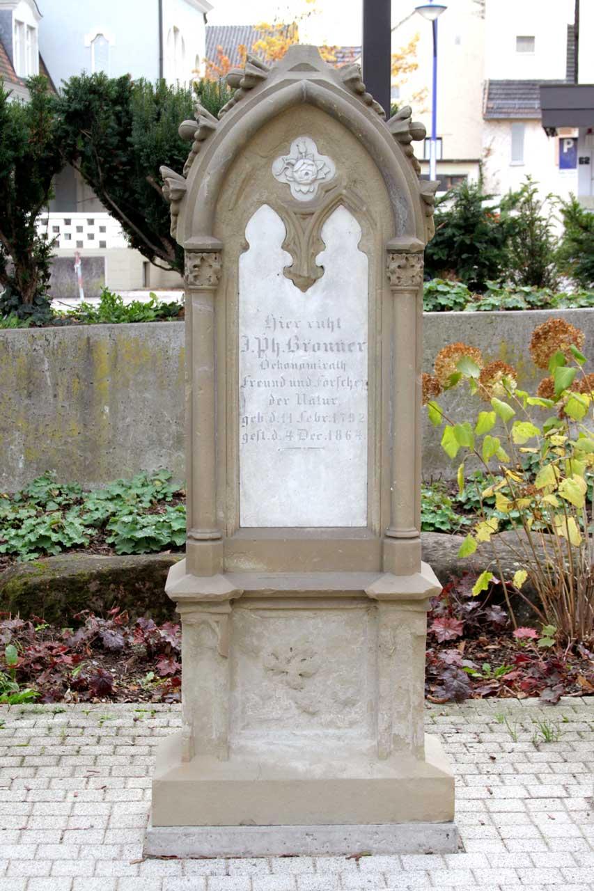Der Apotheker, Naturwissenschaftler, Weinbauforscher, Reisende, Unternehmer und Rosenfreund Johann Philipp Bronner lebte von 1792 bis 1864. Geboren in Neckargemünd, kam er nach Wiesloch und übernahm die dortige Apotheke. Er machte viele Reisen im Auftrag des Markgrafen von Baden, führte eine eigene Rebschule, hatte mehrere Patente und verbrachte schließlich seine letzten Lebensjahre mit der Kultivierung von Rosen.